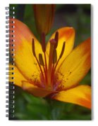 Variegated Lily Spiral Notebook