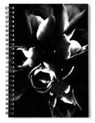 Variegated Tulips Spiral Notebook