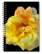 Variegated Yellow Rose Spiral Notebook