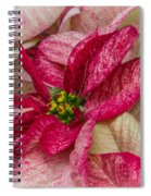 Varigated Poinsettia Spiral Notebook