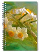 Veil On  Narcissus Spiral Notebook