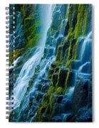 Veiled Wall Spiral Notebook