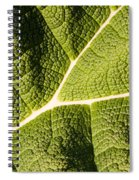 Veins Of A Leaf Spiral Notebook