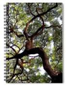 Veins Of Life Spiral Notebook