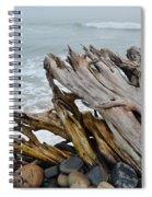 Ventura Driftwood II Spiral Notebook
