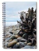 Ventura Driftwood  Spiral Notebook