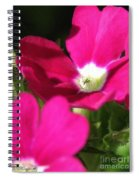 Verbena From The Ideal Florist Mix Spiral Notebook