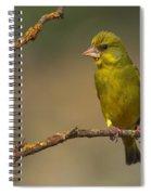 Greenfinch Spiral Notebook