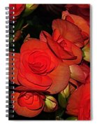 Vermillion Fire Spiral Notebook