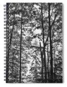Vermont Forest Sunrise Ricker Pond Black And White Spiral Notebook
