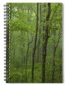Vermont Mount Mansfield Green Forest Fog Panorama Spiral Notebook