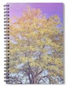 Vermont Tree Light Leak Sunflare  Spiral Notebook