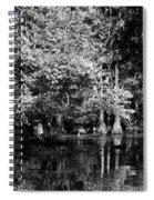 Vernon Lake Four Spiral Notebook
