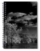 Vernon Lake Three Spiral Notebook