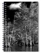 Vernon Lake Trip Spiral Notebook