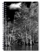 Vernon Lake Trip Spiral Notebook