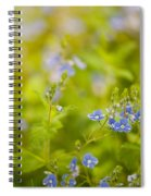 Veronica Chamaedrys Named Speedwell Or Gypsyweed Spiral Notebook