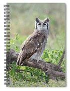 Verreauxs Eagle-owl Bubo Lacteus Spiral Notebook
