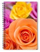 Very Bold Bunch Spiral Notebook
