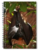 Very Fruity Bat Spiral Notebook