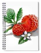 Artz Vitamins A Very Happy Raspberry Spiral Notebook