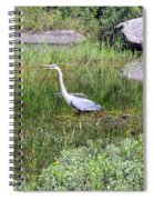 Very Hungry Blue Heron Spiral Notebook
