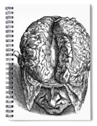 Vesalius: Brain, 1543 Spiral Notebook
