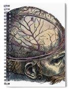 Vesalius: Cranium Spiral Notebook