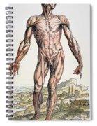 Vesalius: Muscles 01 Spiral Notebook