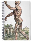 Vesalius: Muscles 02, 1543 Spiral Notebook
