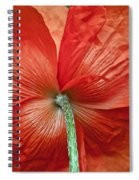 Veterans Day Remembrance Spiral Notebook