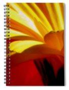 Vibrance  Spiral Notebook