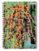 Vibrant Berries Spiral Notebook