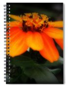Vibrant Colored Zinnia Spiral Notebook