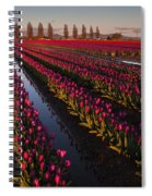 Vibrant Dusk Tulips Spiral Notebook