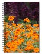 Vibrant Zinnias Spiral Notebook