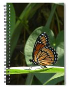 Viceroy 2 Spiral Notebook