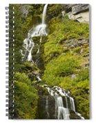 Vidae Falls 2 Spiral Notebook
