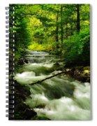 Viento Creek In June Spiral Notebook
