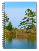 View From Killarney Mountain Lodge Spiral Notebook
