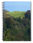 View From Nepenthe In Big Sur Spiral Notebook