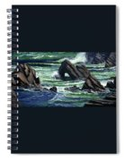 View From The Bluffs Spiral Notebook