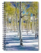 View Of Aspens In Fresh Winter Snow Spiral Notebook