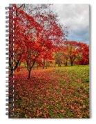 View Of Autumn Spiral Notebook
