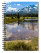 View Of Mount Tallac From Taylor Creek Beach Lake Tahoe Spiral Notebook