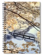 View Through The Trees Spiral Notebook