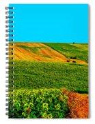 Vincent Van Gogh's Inspiration Spiral Notebook