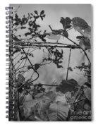 Vine On Fence Spiral Notebook