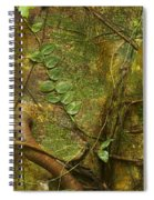 Vine On Tree Bark Spiral Notebook