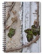 Vine On Wall Spiral Notebook